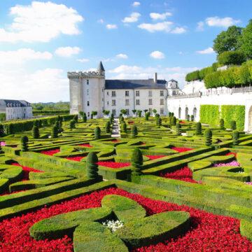 Obiectiv – Frumusețea  grădinilor